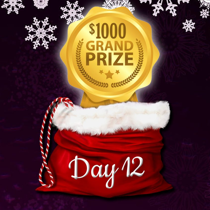 Grand Prize Christmas Giveaway – enter until Dec 31st
